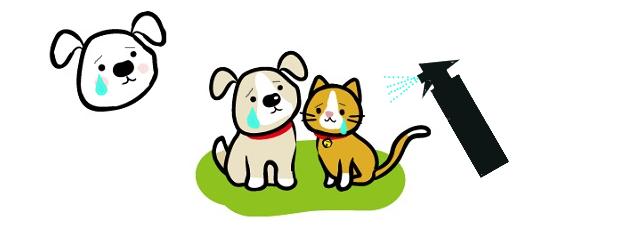 ペット消臭剤の正しい使い方と危険性